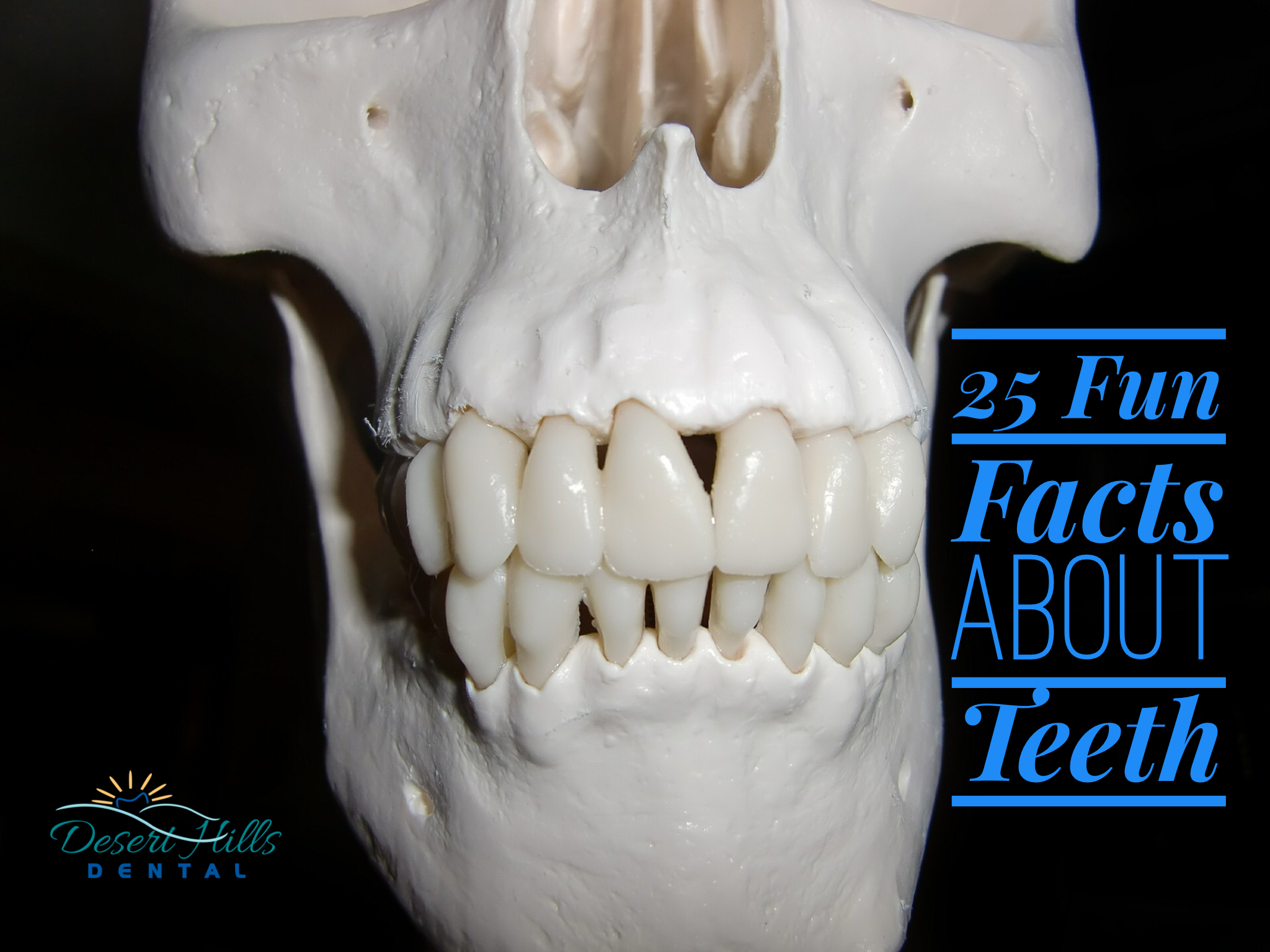 Fun Facts About Teeth